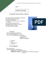 Curs 11-Endodontie
