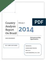 report on brazil