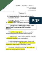 AULA _ SOBRE A ESTRUTURA SOCIAL (1).doc