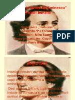 ceimiciinlumealuieminescu_proiecttematic