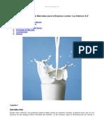 propuesta-plan-mercadeo-empresa-lactea-las-delicias-s-a.doc