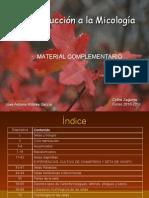 Introduccion a La Micologia - Jose Antonio Robles Garcia