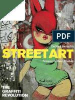 Cedar Lewisohn Street Art the Graffiti Revolution 2009