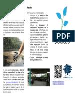 Source International Flyer English