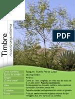 arboles de veracruz.pdf