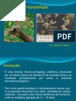 HanseníaseFMP13