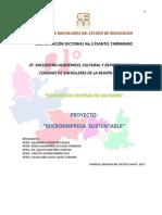16.- Microempresa Sustentable