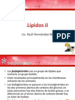 Lipidos II