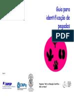 GuiaParaIdentificacaoDePegadas