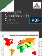 Patologia Neoplasica de Colon