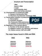 Rna Structure  and Transcription