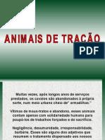 Animais de tracao