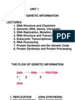 Flow of Genetic Information 1