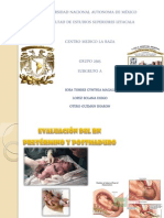 Trauma Obstetrico y Rn Pre y Post