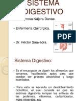 Sistema Digestivo Dana.