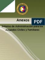 Anexo Juzgado Civil y Familiar