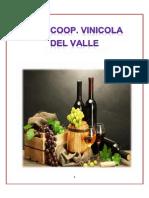 Final Vinicola Del Valle