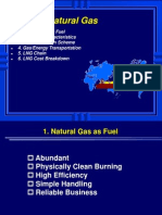 SECL - 1. LNG & Natural Gas General c