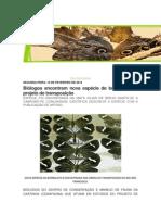 Mostra noticias recentes a respeito de borboletas e borboletários alem de descrever espécies de fácil criação em cativeiro
