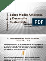 Sobre Medio Ambiente y Desarrollo Sustentable