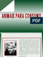 Animais para consumo