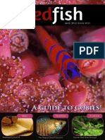 Redfish Magazine 2012 May