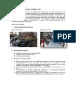Informe General Bodega Casimena (2)
