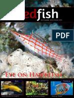 Redfish Magazine 2012 September