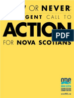 Now or Never Nova Scotia - Final Report with Research & Engagement Documentation