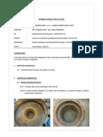 Informe Tecnico Nº 028-13 - Bomba Centrifuga Horizontal GOULDS  IC 100 65-315