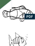 ikan psv