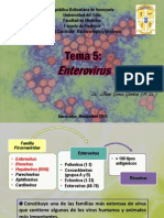 Tema 5 Enterovirus