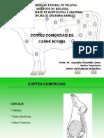Cortes Comerciais
