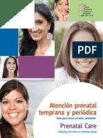 Prenatal CareMar09