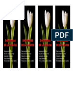 Las 5 Solas y Loa 5 Puntos Del Calvinismo