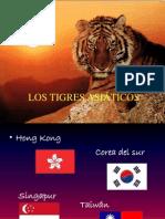 tigresasiaticospresentacion-100412163602-phpapp02