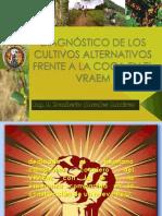 Impacto de Los Cultivos Alternativos en El Vraem