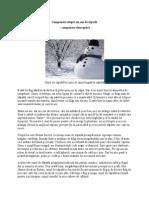 Compunere despre un om de zăpadă