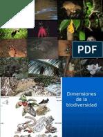 Biodiversidad Clase II