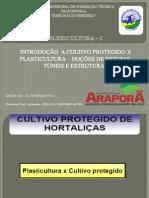 INTRODUÇÃO  A CULTIVO PROTEGIDO X PLASTICULTURA – NOÇÕES DE ESTUFAS, TÚNEIS E ESTRUTURAS