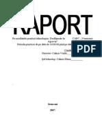 Raport de Practica La Vorniceni - Agrovin