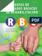 Guia de CBR 2010.pdf