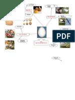 Harta proiect1