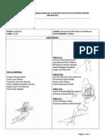 acta 072013 IIICCAAS.pdf