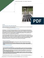 Faxinais em risco de extinção - Vida e Cidadania - Gazeta do Povo.pdf
