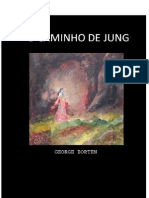 Caminho de Jung