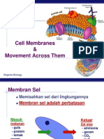 08 Cell Membranes 2009