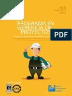 Gerproy Online 2014 i Lima - Extranjero