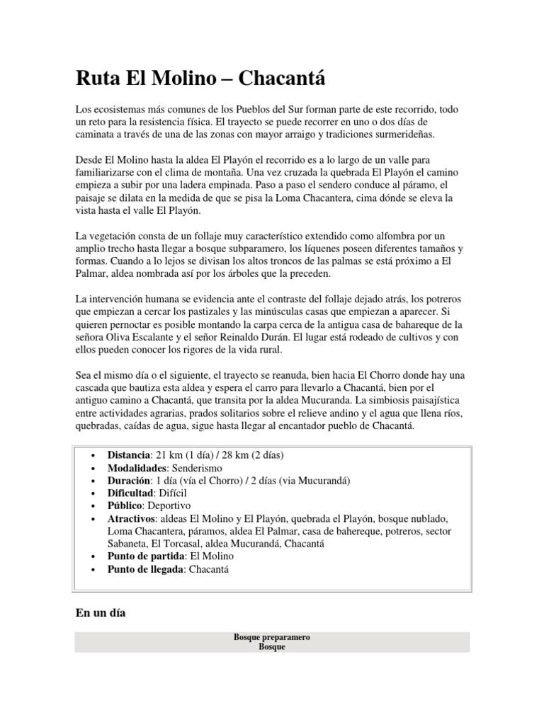 Asombroso Reanudar En Pdf O Docx Ilustración - Colección De ...