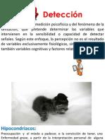 DETECCIÓN  DE PERSONAJES